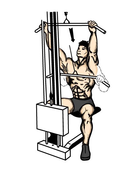 ryg øvelser styrketræning