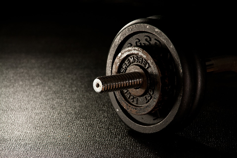 Hvilke justerbar træningsbænk er pengene værd